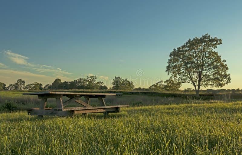 Table de pique-nique au coucher du soleil avec l'arbre solitaire images libres de droits