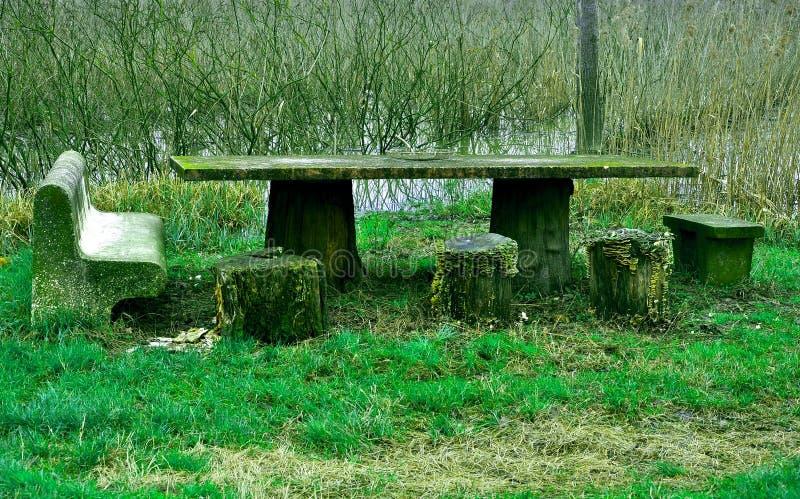 Table de pique-nique dans les bois photographie stock libre de droits