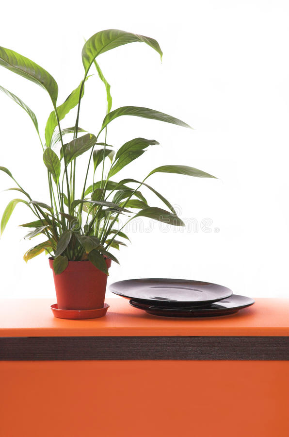 Table design stock images