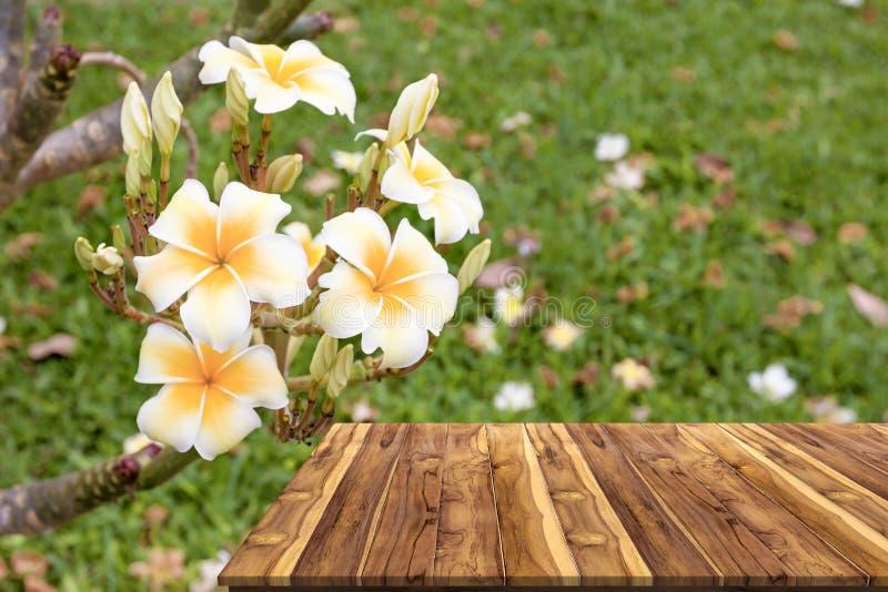 Table en bois avec le plumeria dans le jardin photos stock