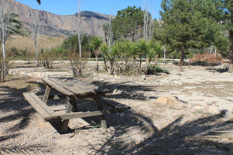 Table et bancs en bois photo stock