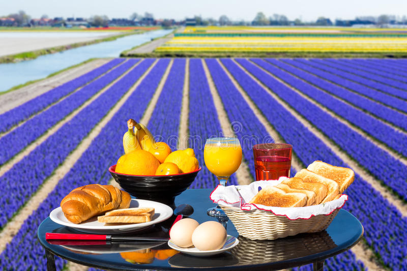 Table with food and drink near flowers field stock photography
