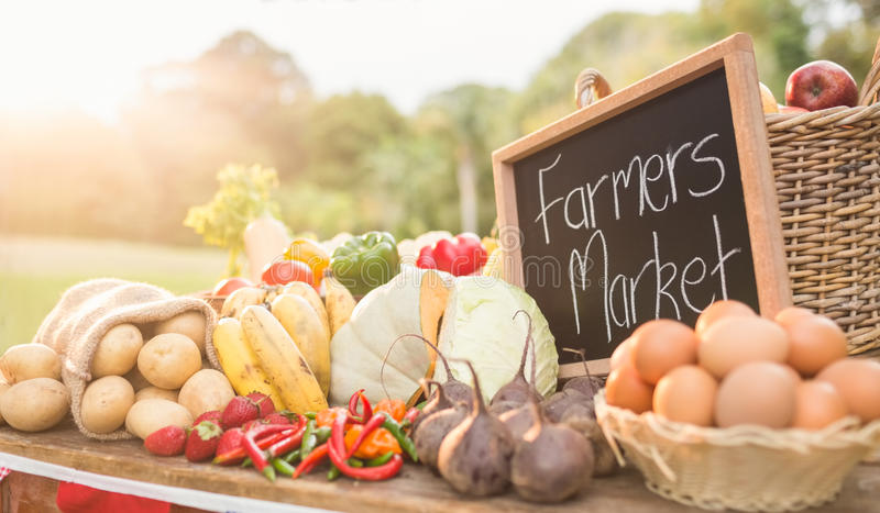 Table with locally grown vegetables. In the park stock image