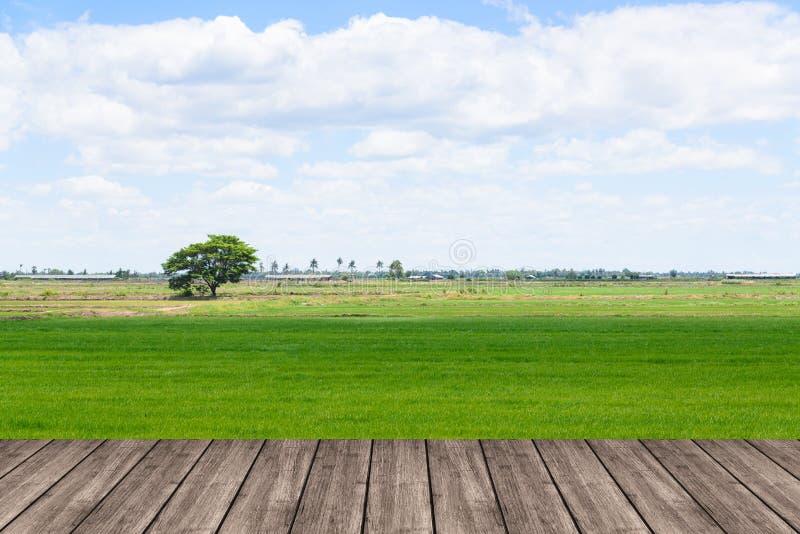 Table ou terrasse en bois sur le gisement de riz et le DIS de ciel et vide bleu images libres de droits