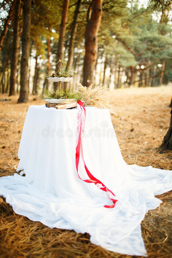 Table in the pine forest. Wedding table in the pine forest with plates, red ribbon, cones, spikelets. Decor royalty free stock photo