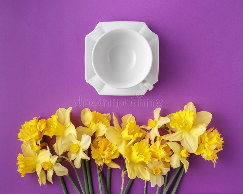 Table set with clean tea cup and narcissus flowers royalty free stock images