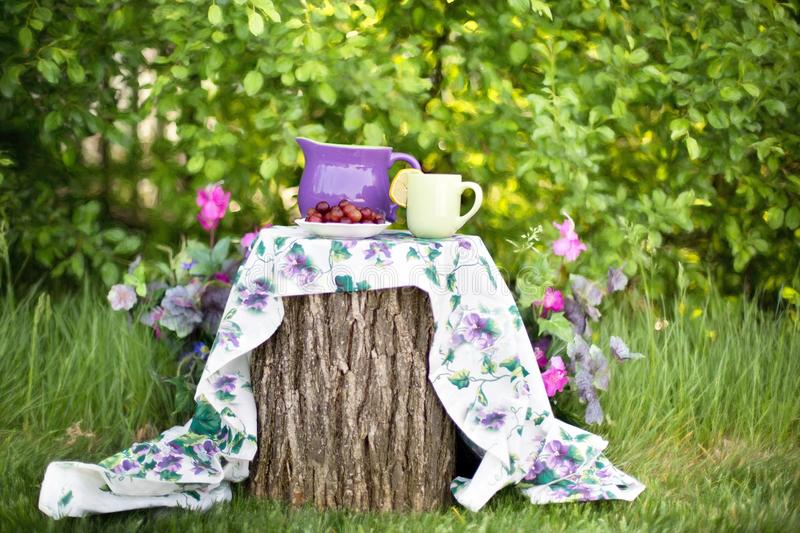 Table setting in garden stock photography