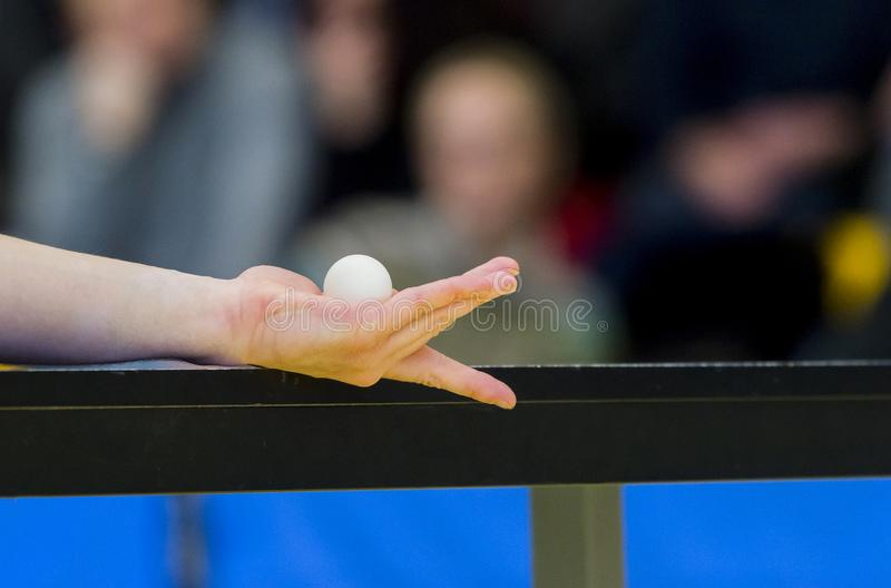 Table tennis player serving, close up. Individual sport . stock photo