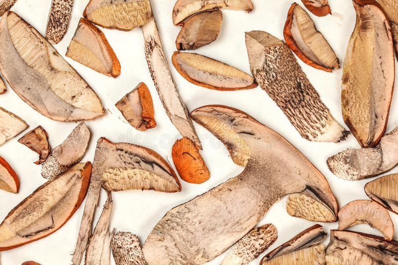 Table top view freshly picked forest mushrooms - orange cup scaber stalk - cut to thin slices, leaved on white paper to dry.  royalty free stock image