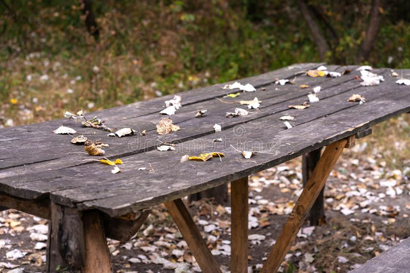 A table and two benches from a rough log house. Recreation area in the forest royalty free stock photos