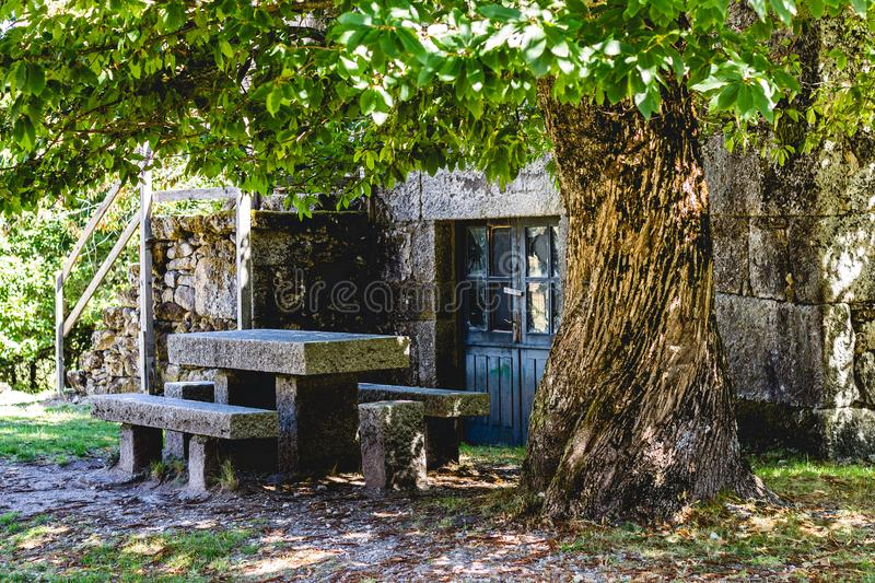 Table under a Chestnut tree royalty free stock images
