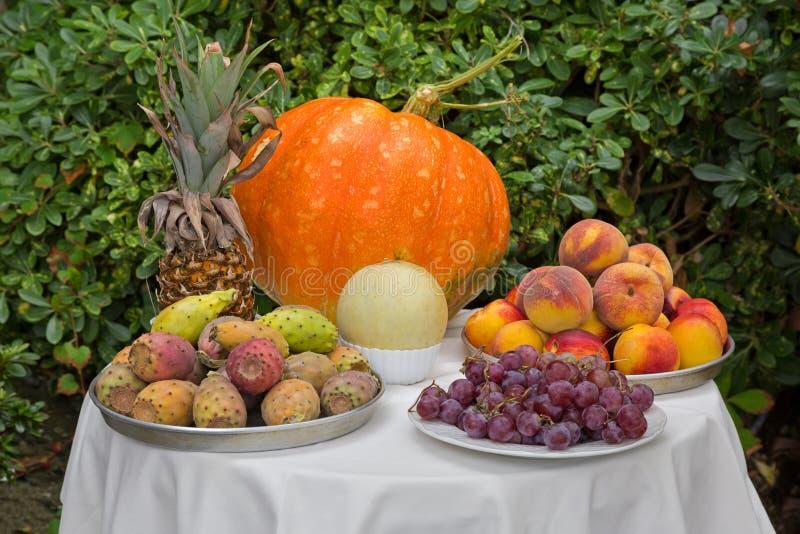 Tableau de fruit, nectarines de pêche de raisins de melon de potiron d'ananas, image libre de droits