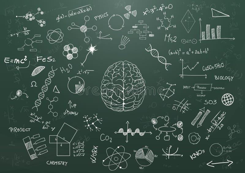 Tableau de la science du cerveau illustration de vecteur