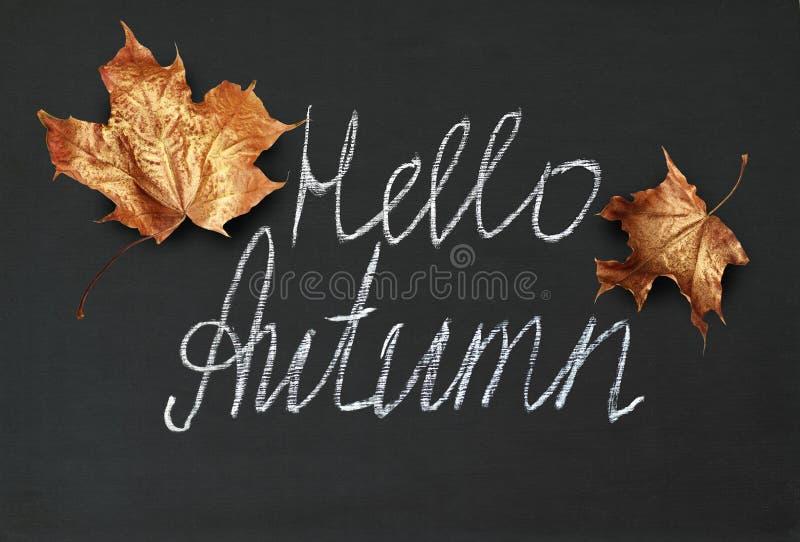 Tableau noir avec les feuilles d'or et l'inscription d'érable de l'automne de bonjour photographie stock libre de droits