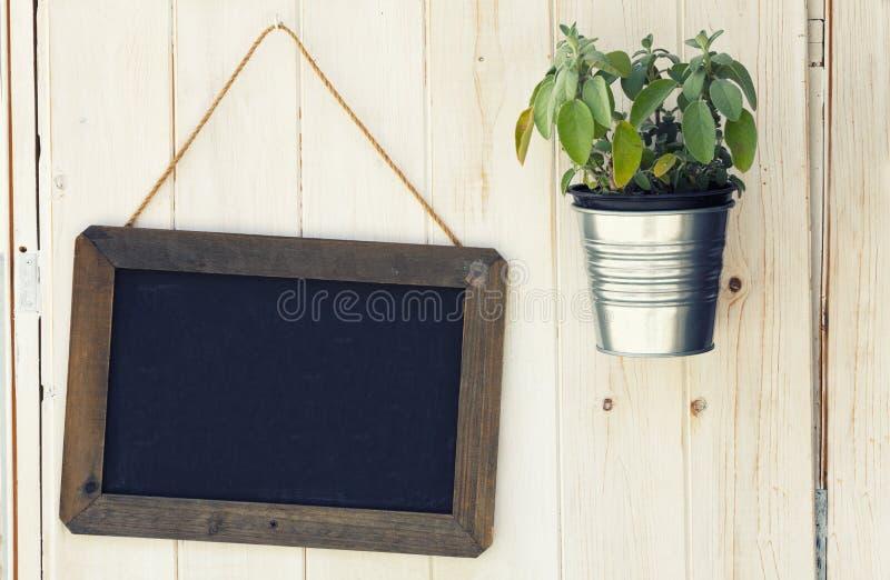 Tableau noir et pot avec l'usine sur la surface en bois photographie stock libre de droits