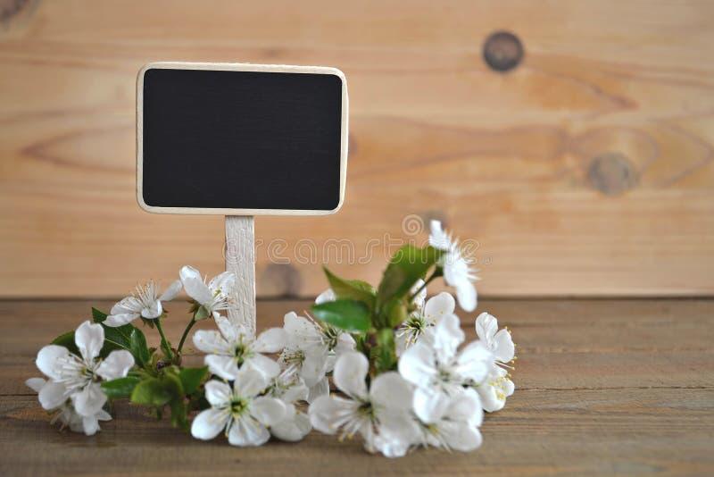 Tableau noir vide avec des fleurs de ressort images libres de droits
