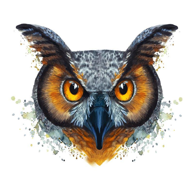 Tableau peint d'aquarelle d'un oiseau vorace de couche-tard sur un fond blanc illustration libre de droits
