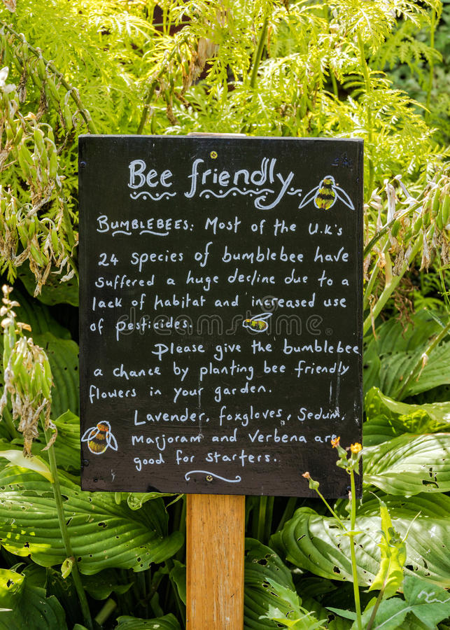 Tablero de ayuda de la información de los abejorros, jardín emparedado, castillo del cercado imágenes de archivo libres de regalías