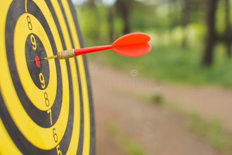 Tablero de dardo con la flecha de los dardos en el centro de la blanco en el parque imagen de archivo libre de regalías