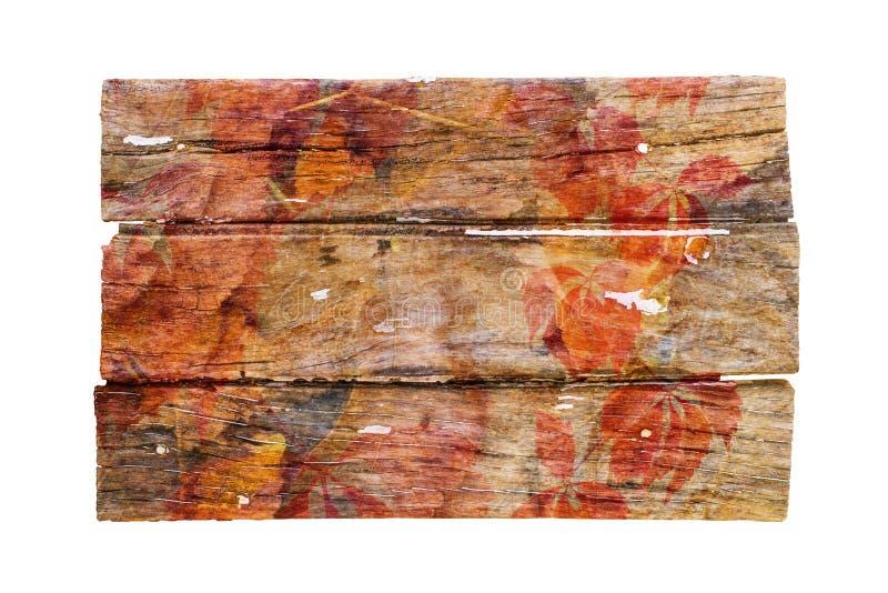Tablero de madera cubierto en las hojas aisladas fotos de archivo