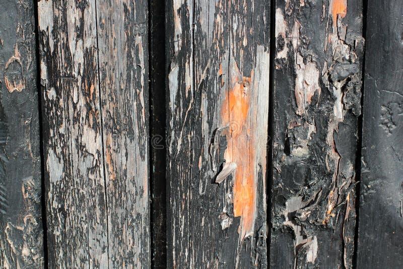 Tableros de madera oscuros, tablones Madera naturalmente envejecida, proceso de cepillado natural La visión superior Primer Las f imagen de archivo libre de regalías