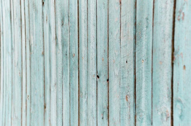 Tableros de madera pintados en la textura azul brillante, tre superficial lamentable imagen de archivo