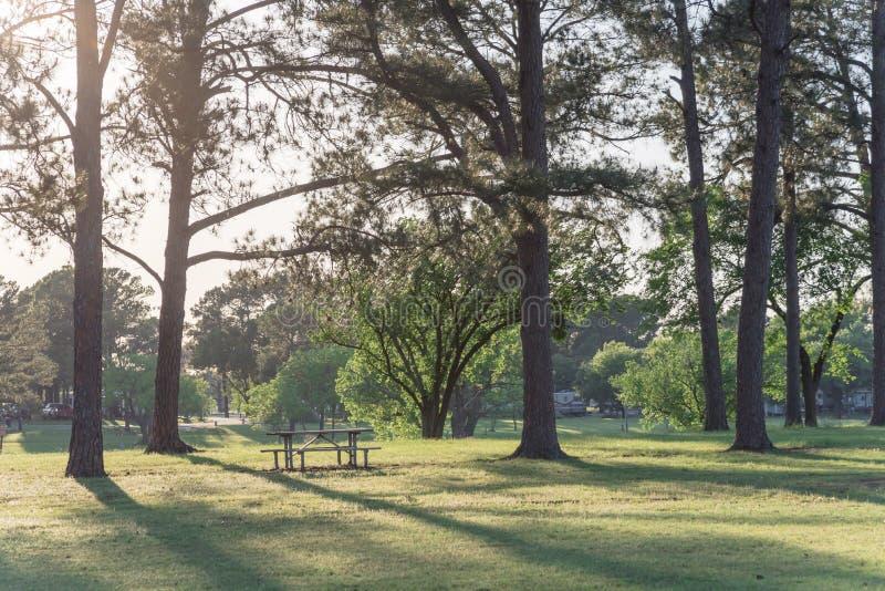 Tables de pique-nique vides en m?tal au beau parc avec beaucoup d'arbres au coucher du soleil en Am?rique image libre de droits