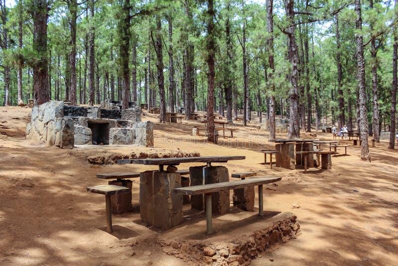Tables en bois et grils en pierre pour la forêt canarienne de pique-nique et de pin de barbecue, Esperanza, Ténérife photos libres de droits