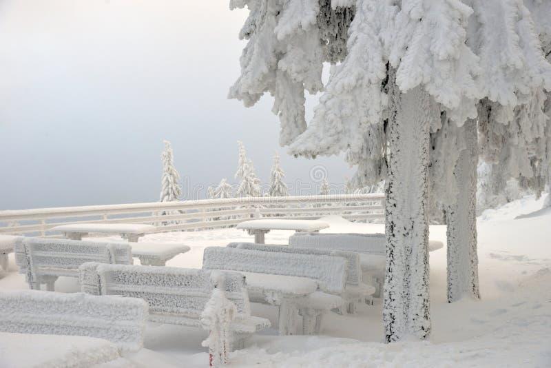 tables et bancs couverts de neige sous des sapins en montagnes photographie stock libre de droits