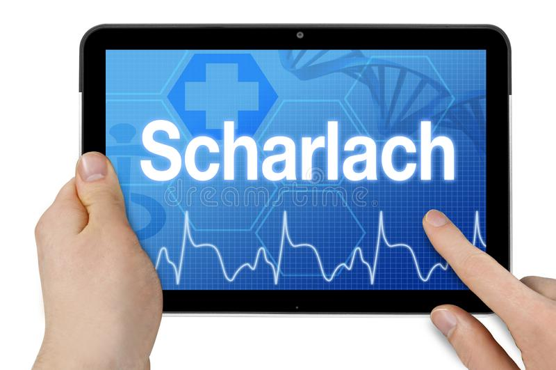 Tablet pc com a palavra alemão para o escarlate - febre - Scharlach fotografia de stock royalty free