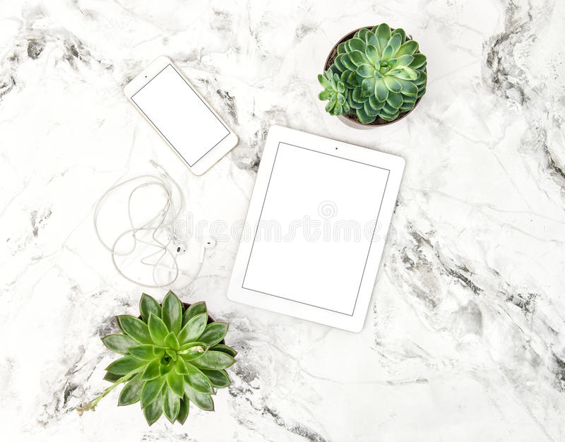 Tablet PC succulent plants phone Office table Flat lay stock photography