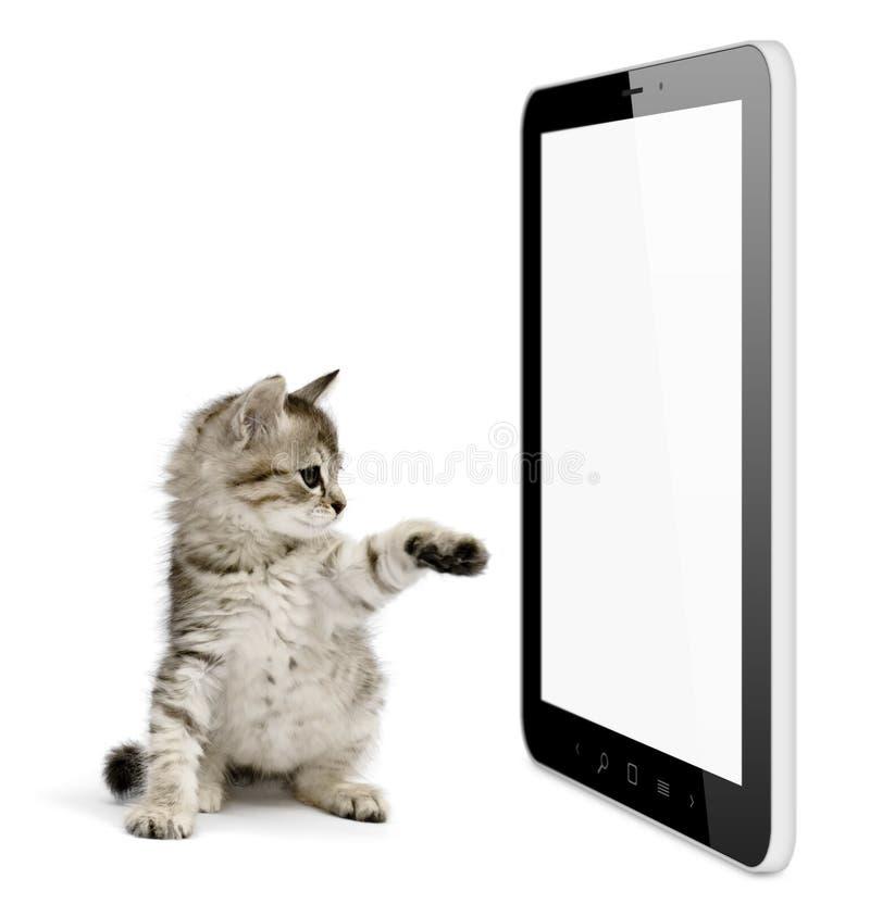 Tableta imágenes de archivo libres de regalías