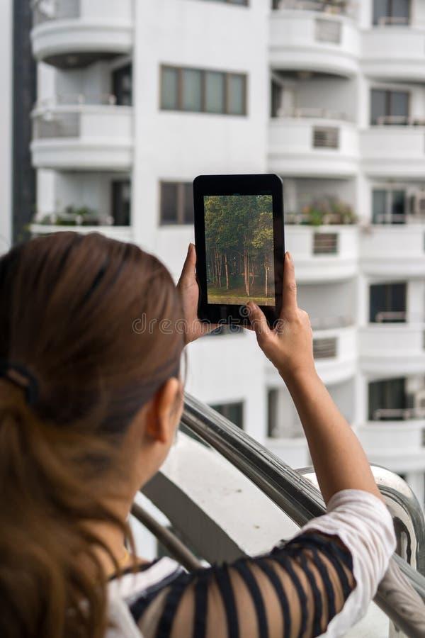 Tableta de la tenencia de la mujer en sus trabajos forzados con la opinión del bosque sobre la pantalla imágenes de archivo libres de regalías