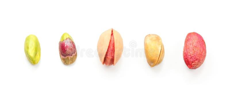 Tabletop foto - olika etapper av pistaschen från grön skalad frukt till muttern i röd hud arkivbild