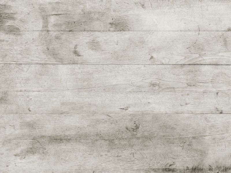 Tabletopvitträ arkivbild