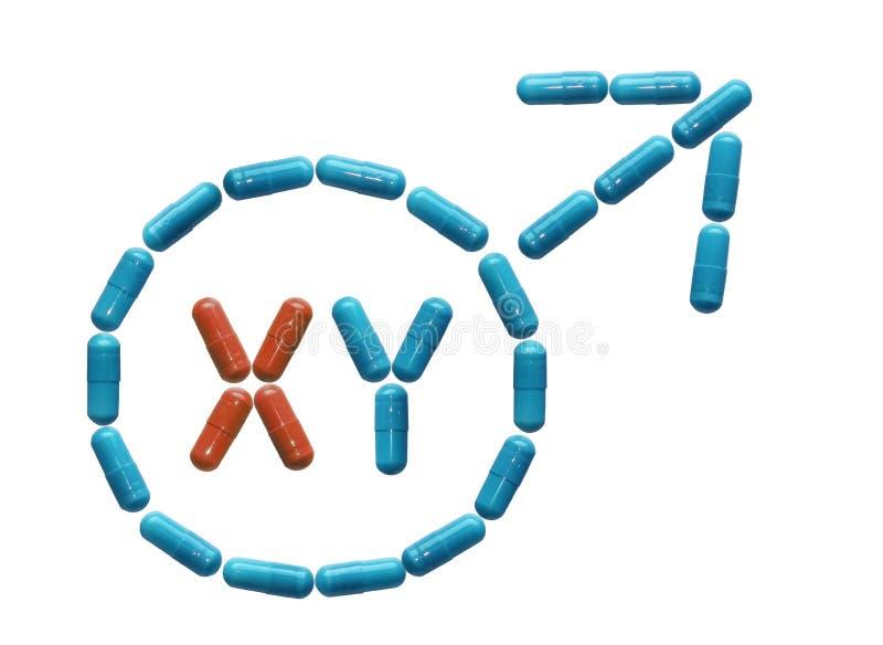 Tablets für Mann werden in einem männlichen Symbol mit Chromosomen gezeichnet Erhöhte Kraft und Aufrichtung Menschliche Gesundhei stockbild
