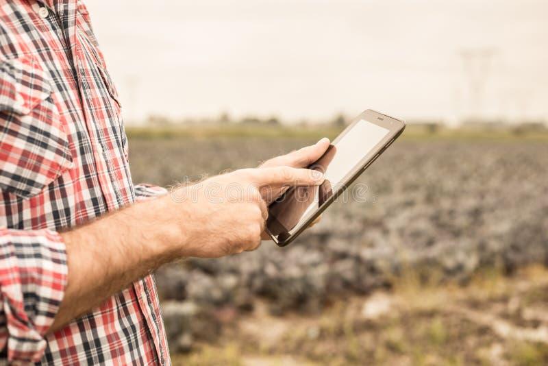 Tablette dans des mains du ` s d'agriculteur, champ de chou comme fond photos libres de droits