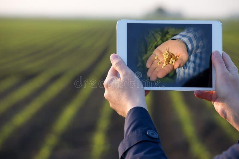 Tabuleta da terra arrendada do fazendeiro na frente do campo foto de stock royalty free