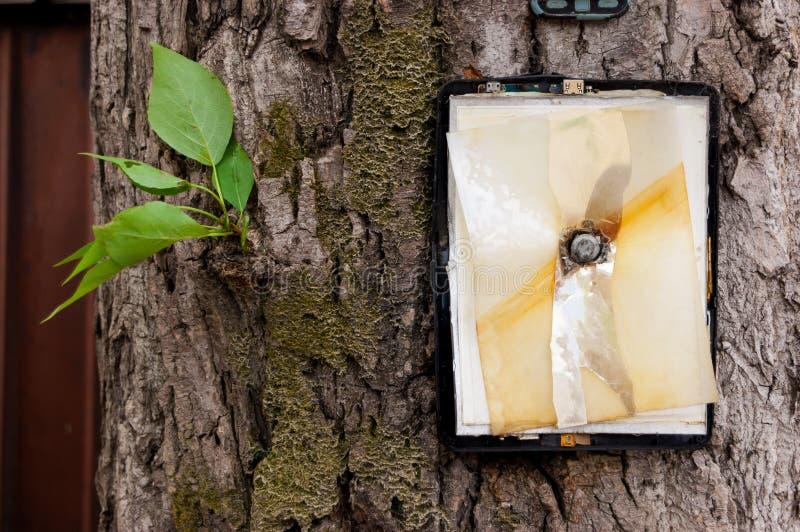 A tabuleta quebrada sem tela pregou o grande prego à árvore com poucas folhas verdes imagens de stock royalty free