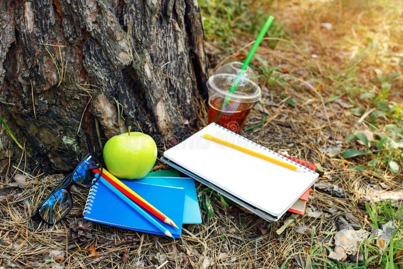 Taccuini, libro, matite, vetri, mela, succo al parco sotto il TR immagine stock libera da diritti