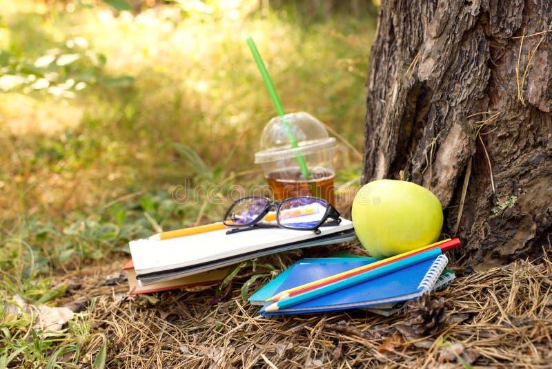 Taccuini, mela, succo, libro, matite e vetri sotto un albero immagine stock