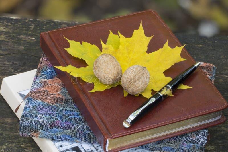 Taccuino con le foglie e la noce di giallo Vista superiore immagine stock libera da diritti