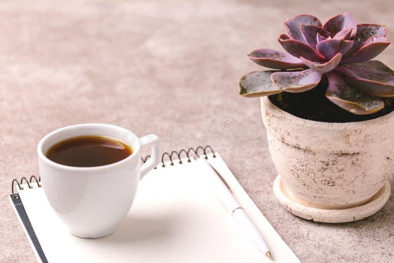 Taccuino, penna, pianta succulente e caffè workplace orizzontale fotografia stock libera da diritti