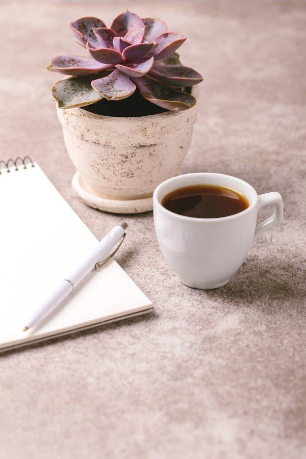 Taccuino, penna, pianta succulente e caffè workplace orizzontale fotografia stock