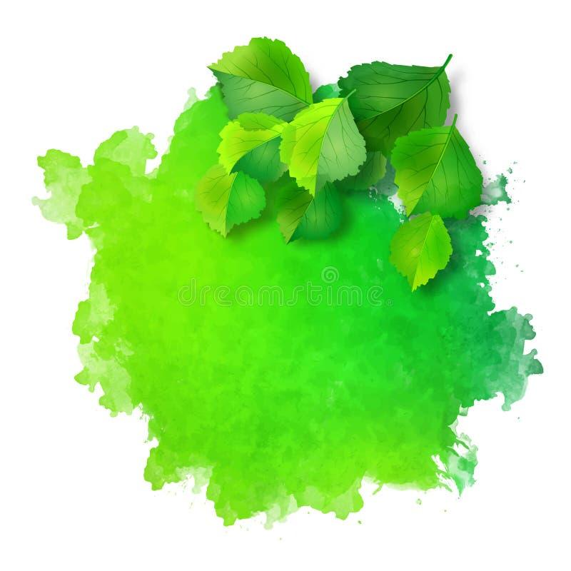 Tache d'aquarelle de vecteur avec les feuilles vertes illustration de vecteur