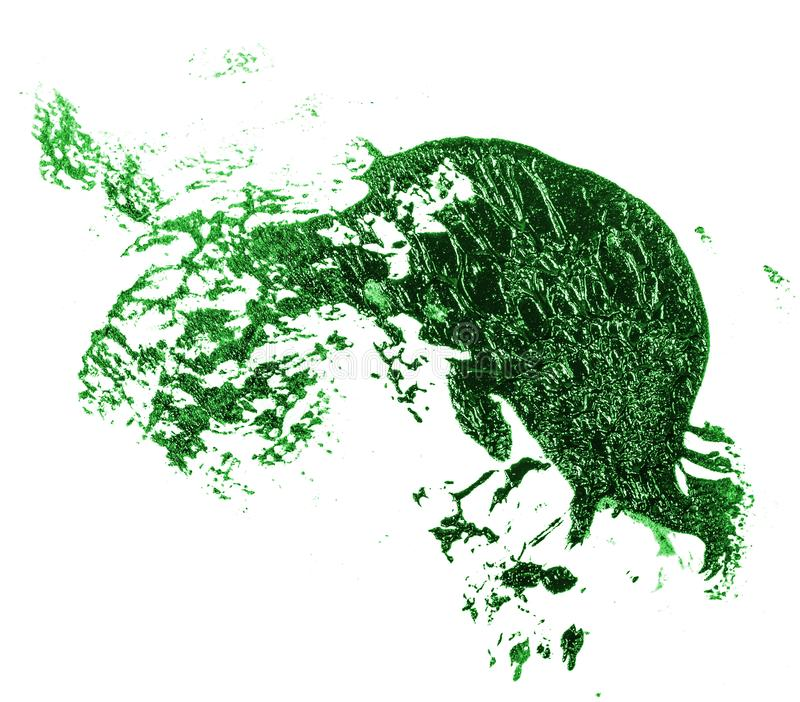 Tache de peinture verte d'huile sur le blanc photo stock