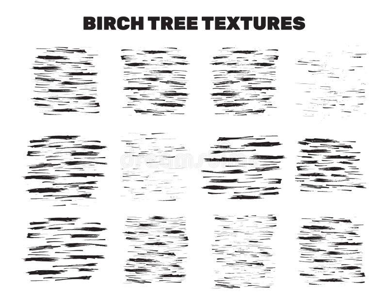 Taches d'écorce d'arbre de bouleau, collection matérielle illustration de vecteur