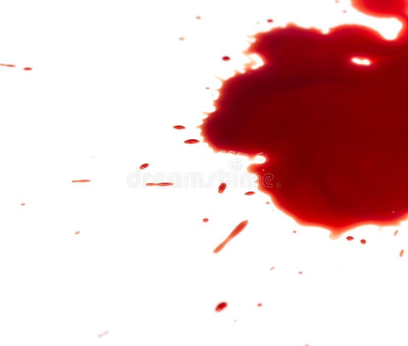 Taches de sang sur le blanc image stock