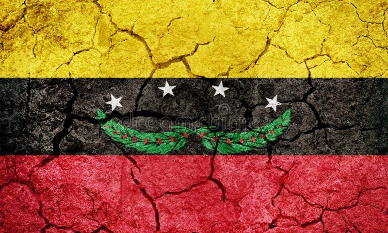 Tachira tillståndsflagga royaltyfri foto