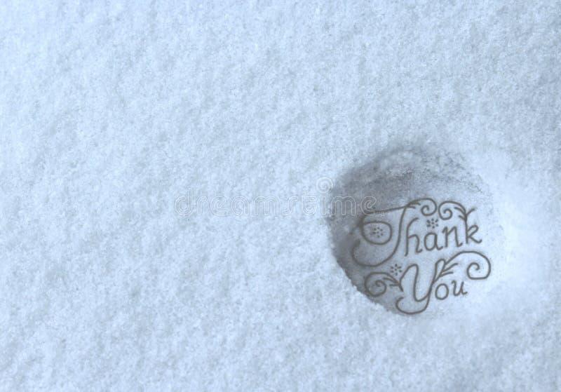 Tacka dig stämplade i snö royaltyfri foto
